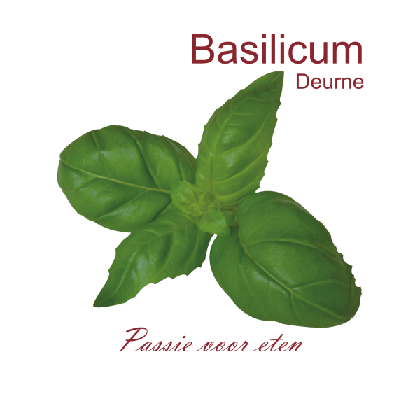 Logo Basilicum Deurne